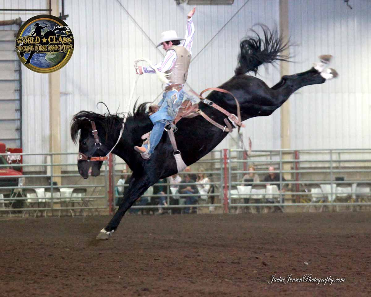 cinch-world-class-bucking-horse-championship-2014-saturday-100