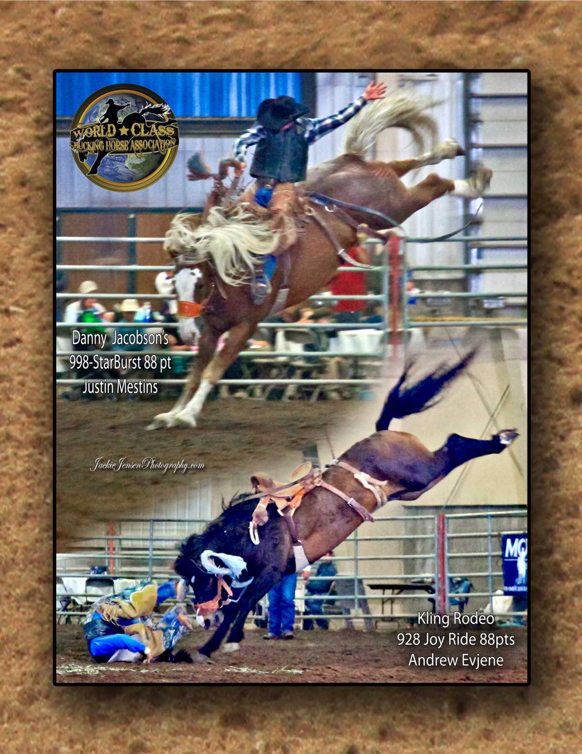 co-champion-collage-poster-cinch1
