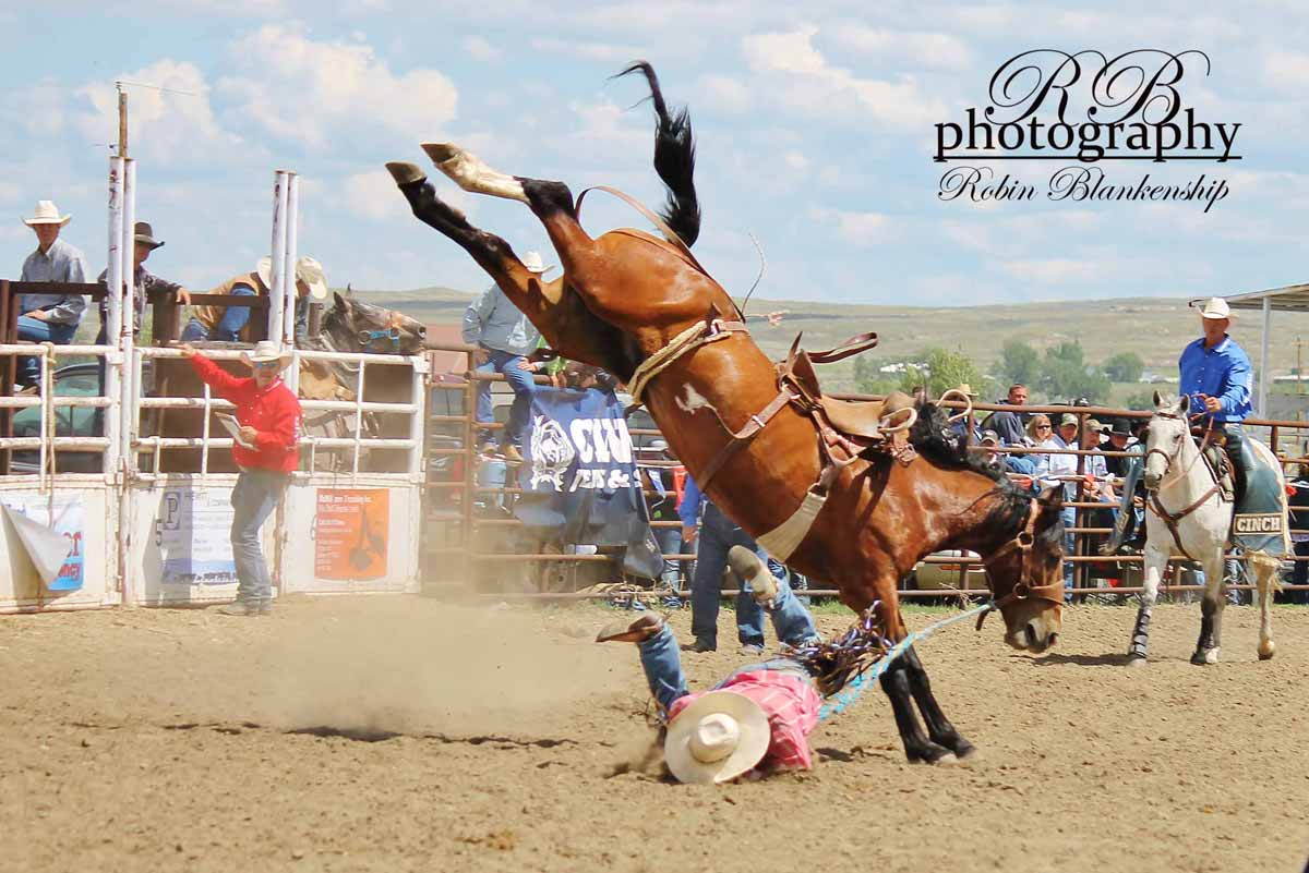 cinch-wcbha-2014-03-web